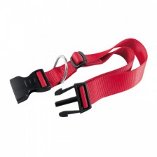 Collars Harnesses and Leashes